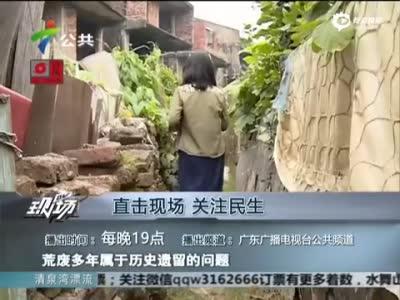 深圳现124栋烂尾别墅群 荒废24年变菜园