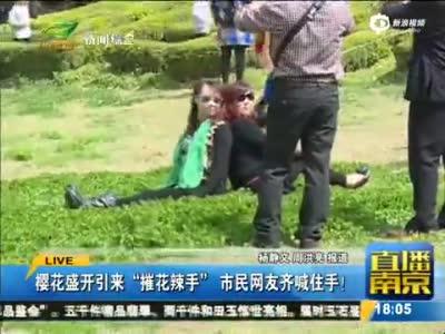 """游客为造""""樱花雨""""脚踹樱花树 有人爬树拍照"""
