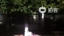 补发视频D417象喝醉酒一样[偷笑]不过橙子摔倒可没哭哦[good][good](来自拍客手机客户端 下载地址:http://video.sina.com.cn/app/sinapaike.html)