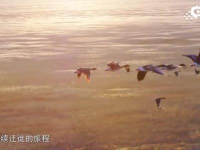 《航拍中国》第三季——《一同飞越》吉林篇