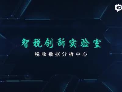 """""""智税""""引领税收现代化腾飞"""
