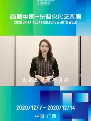 著名演员、广西文化旅游形象大使王鸥等你共享文化艺术盛宴