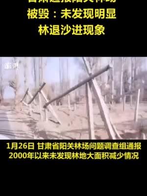 甘肃通报阳关林场被毁:未发现明显林退沙进现象