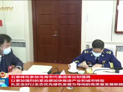 内蒙古自治区两会:石泰峰参加乌海市代表团审议