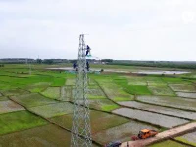 安徽定远:改造输电线路 服务乡村振兴