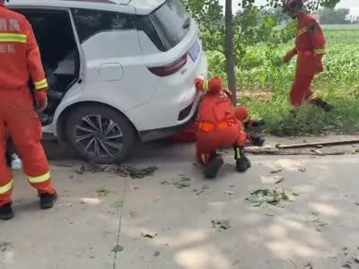 汽车撞树司机被卡满脸流血 消防边喂水边安抚紧急救援